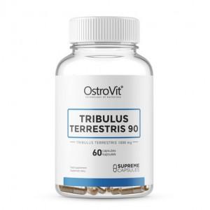 OstroVit TRIBULUS TERRESTRIS 90 60 caps